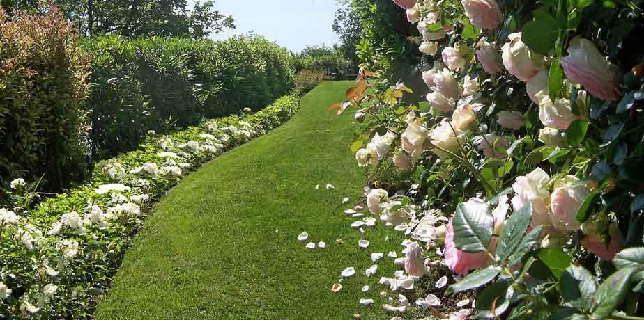 Cinisello in prima fila per la valorizzazione dei giardini for Giardini mediterranei